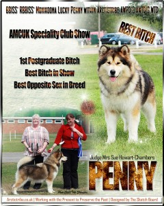 penny amcuk website